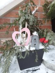Valentine planter